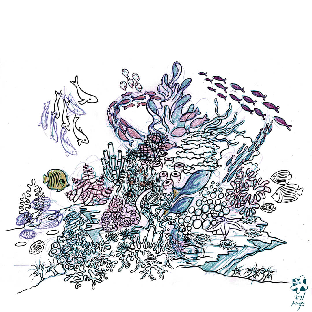 שונית האלמוגים -3