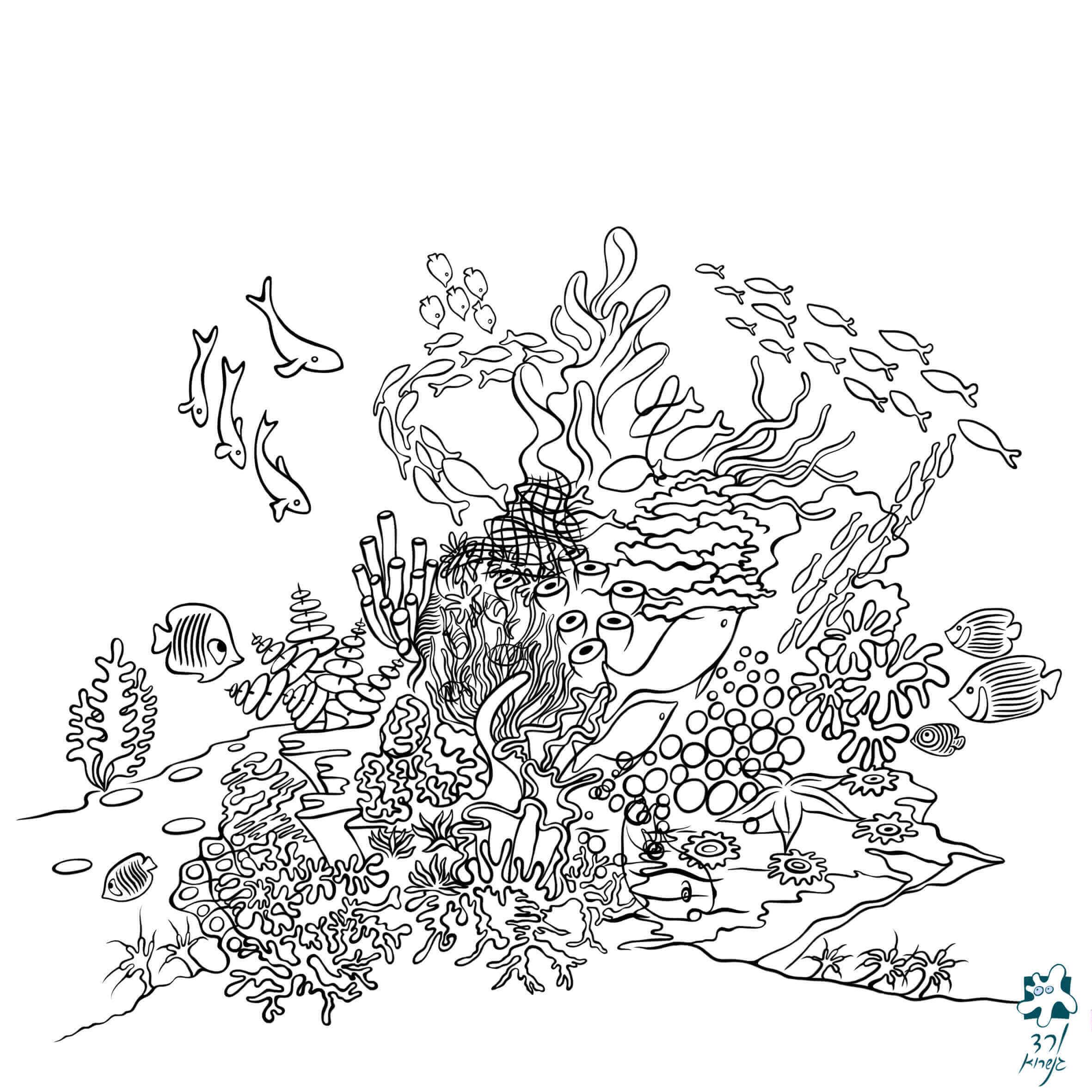 שונית האלמוגים -4
