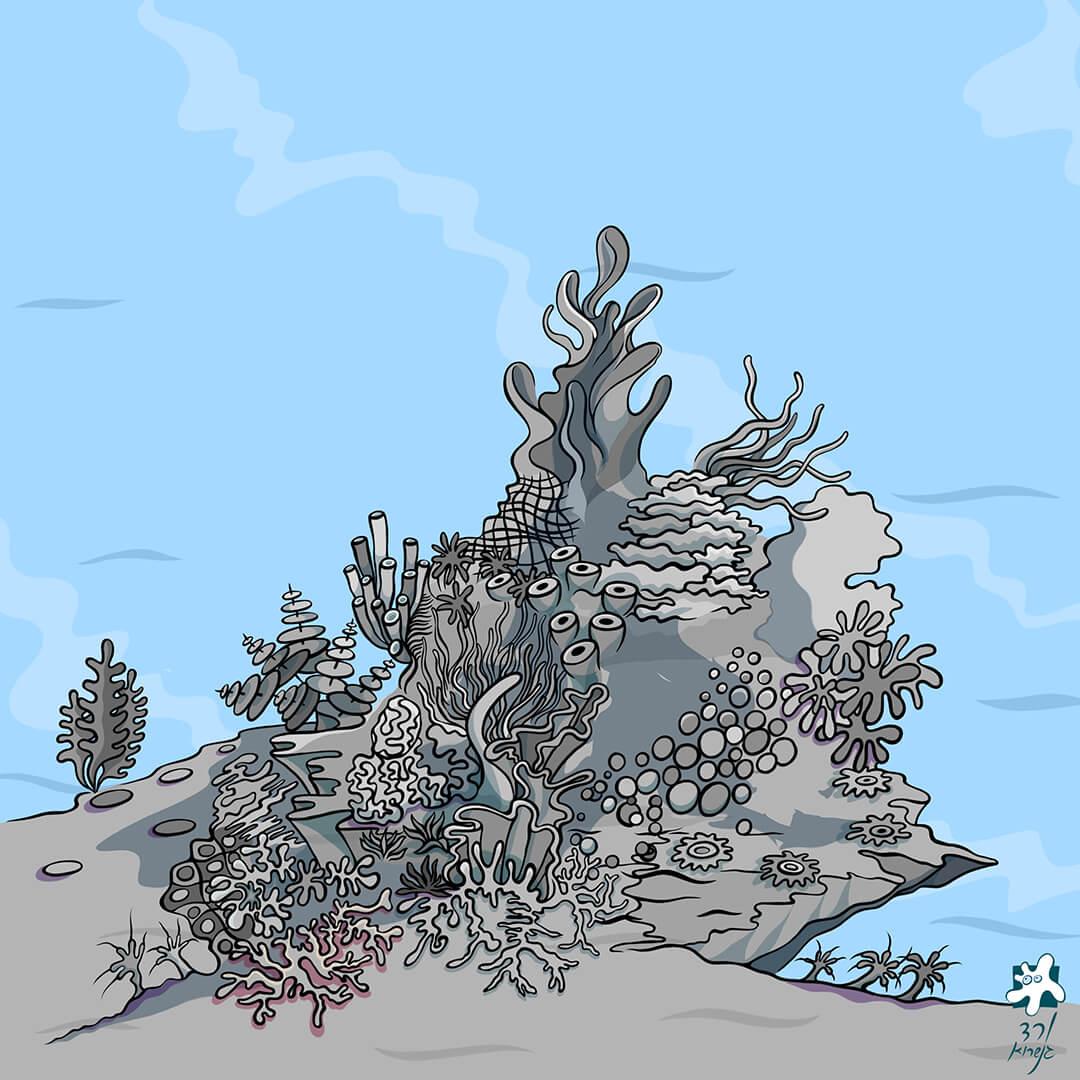 שונית האלמוגים -5