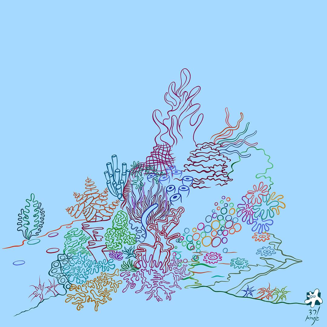 שונית האלמוגים -6